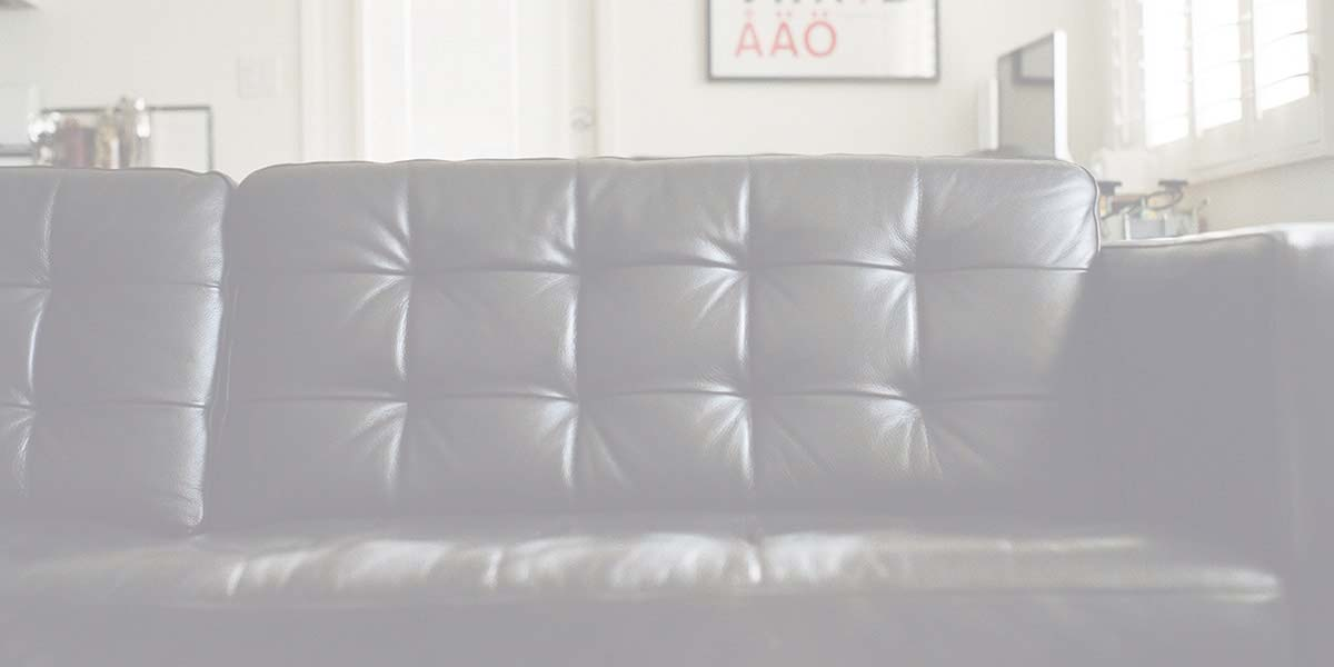 Couch Furniture Leather